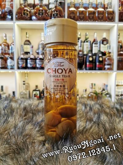 Rượu Mơ Choya Single Year